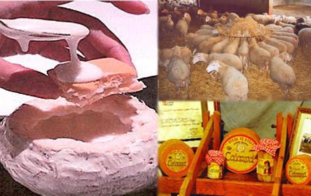 Torta de queso Artesanal Cañarejal por 5€
