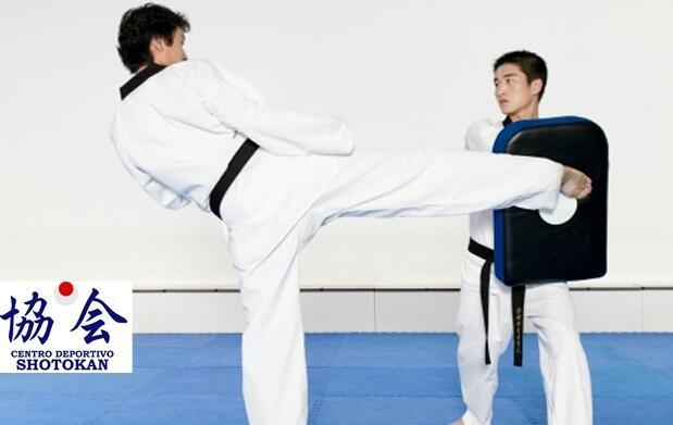 Taekwondo niños o adultos desde 9€/mes