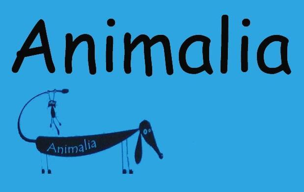 Mascotas: chequeo y vacuna de la rabia