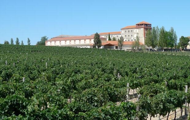 Visita para 2 bodega, monasterio y cata 8€