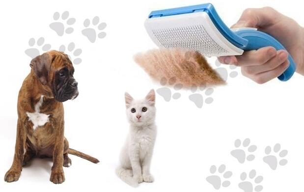 Cepillo para mascotas MyPetEz