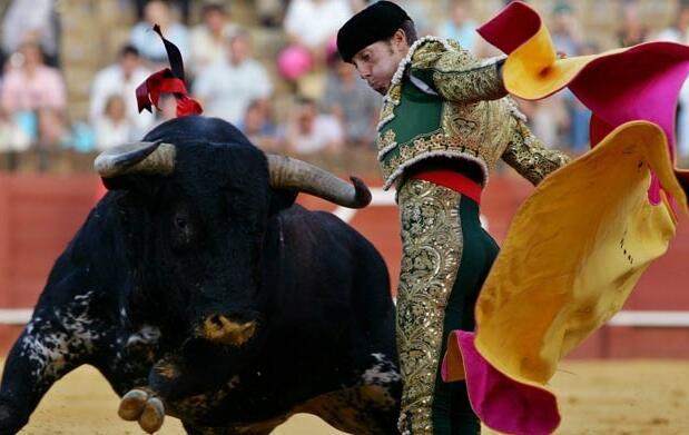 Toros de Adolfo Martín & Valdellán 9€