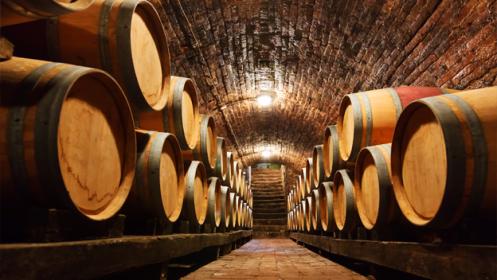 Cata + visita a Bodega de tu preferencia ¡Elige entre más de 150 bodegas en España!