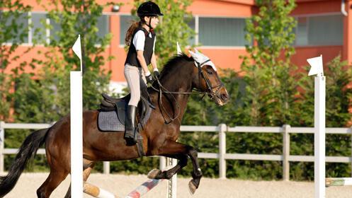 Aprende a montar a caballo, 3 clases 16,90€