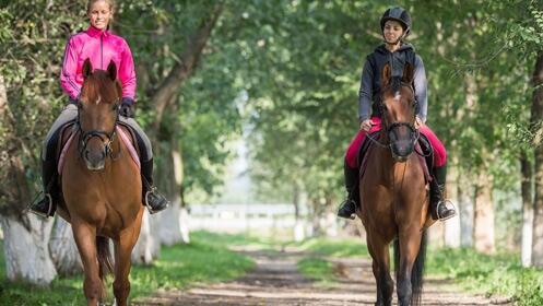Aprende equitación con estas tres clases profesionales
