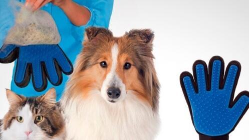 Guante cepillo para perros y gatos Touch Pets