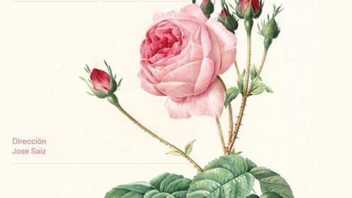 Zarzuela 'La del manojo de rosas'